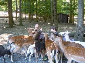 Tierpark Bretten mit großem Streichelzoo
